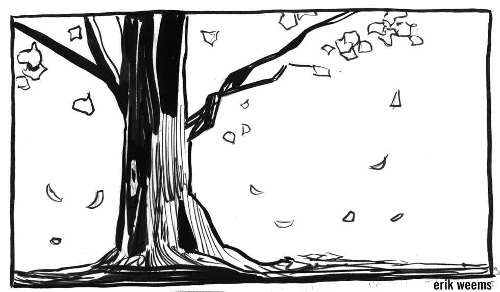 Tree Ink Drawing Fall